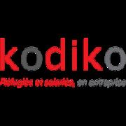 Logo carr