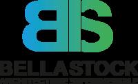 Logo bs 2018 v